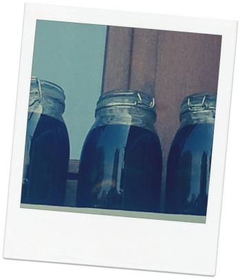 Liqueur de Noix